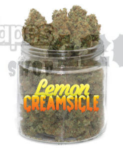 lemon creamsicle strain